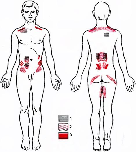 Справочник по массажу. Массаж при заболеваниях органов пищеварения